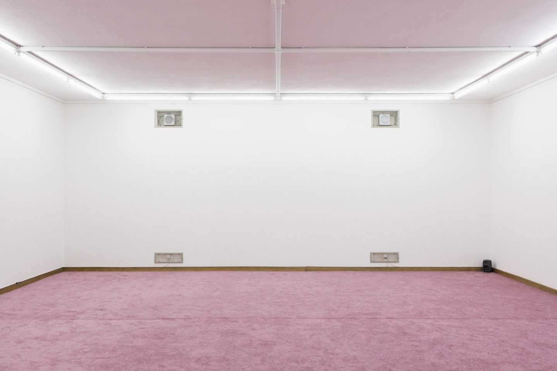 "Exhibition View Marta Riniker-Radich ""A life by default, 2018"" at Kunsthaus Glarus / Photo: Gunnar Meier / Courtesy: the artist"