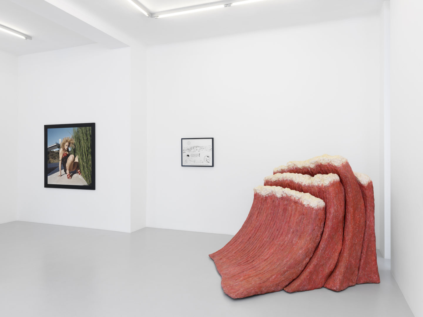 Exhibition View Bettina Rheims, Mike Kelley and Jim Shaw «Look West, Young Man!» at Galerie Xippas, Geneva / Photo: Annik Wetter / Courtesy: Galerie Xippas