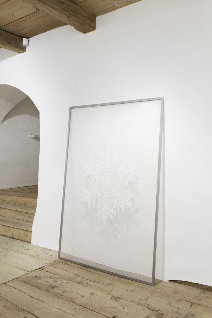 Installation View Bethan Huws «Soloshow / Pluen Eira, 2017» at Galerie Tschudi, Zuoz / Photo: Ralph Feiner / Courtesy: the artist and Galerie Tschudi, Zuoz