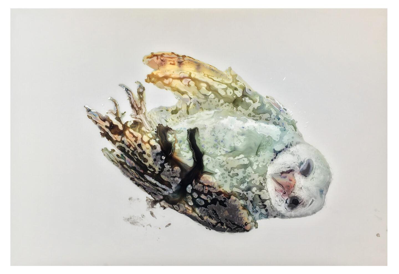 Ida Applebroog Soloshow view on Owl, 2018 at Kunstmuseum Thun, 2019, Thun / Photo: Emily Poole / © Ida Applebroog / Courtesy Hauser & Wirth