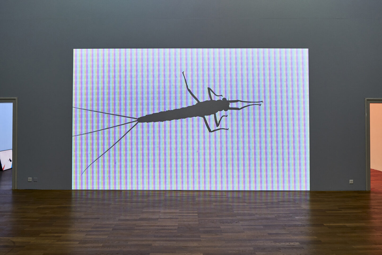 Exhibition View Michael Etzensperger Soloshow «view on Resister, 2019» at Kunsthalle Winterthur, Winterthur, 2019 / Photo and Courtesy: Michael Etzensperger