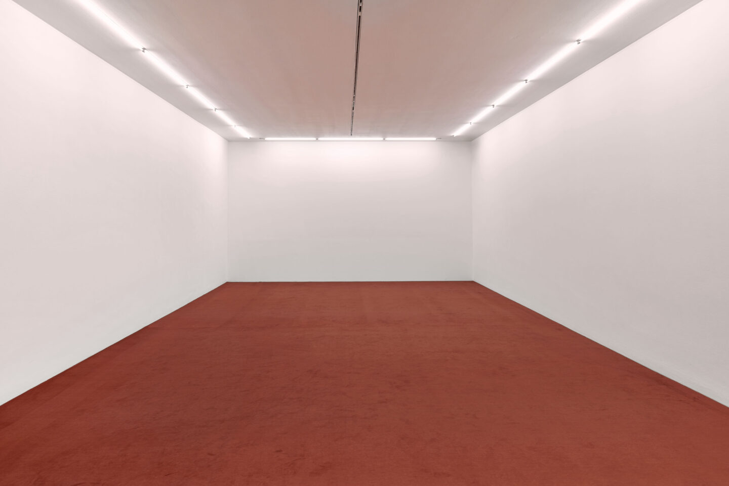 Exhibition View Dora Budor Soloshow «I am Gong» at Kunsthalle Basel / Photo: Philipp Hänger / Courtesy: the artist
