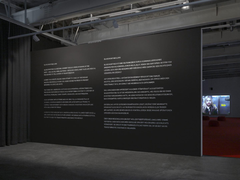 Exbition View Marianna Simnett Soloshow «LAB RATS» at Kunsthalle Zürich, Zurich, 2019 / Photo: Annik Wetter / Courtesy: the artist and Kunsthalle Zürich