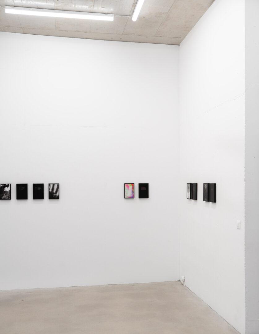 Exhibition View Rinny Gremaud and Mathieu Bernard Soloshow «Splendide» at Galerie Heinzer Reszler, Lausanne, 2019 / Photo: Julien Gremaud / Courtesy: the artist and Heinzer Reszler