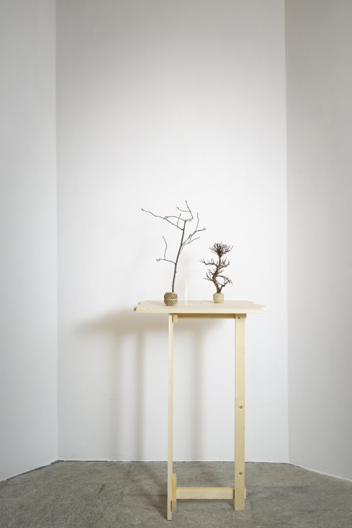 Exhibition View Groupshow «Absolutely Tschudi; view on Su-Mei Tse, Trees & Roots, 2011 - 2019» at Galerie Tschudi, Zuoz, 2019 / Photo: Ralph Feiner, Malans / Courtesy: the artists and Galerie Tschudi, Zuoz
