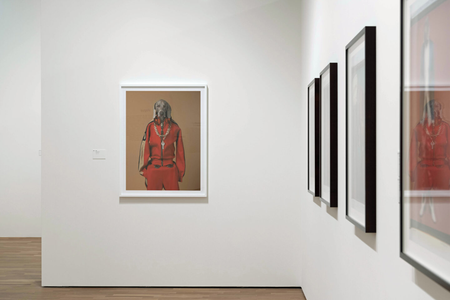 Exhibition View William Wegman Soloshow «Being Human» at MASI, Lugano, 2019 / Courtesy: the artist and MASI, Lugano