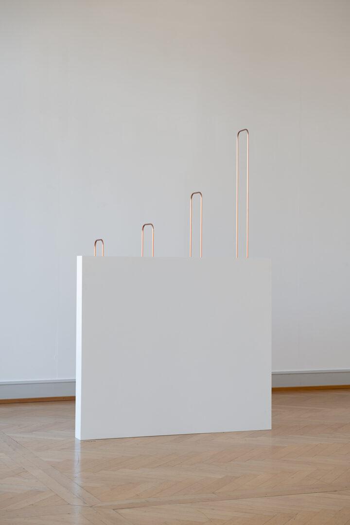 Exhibition View Iman Issa Soloshow «Surrogates; view on Heritage Studies #29, 2017» at Kunstmuseum St. Gallen, St. Gallen, 2019 / Photo: Sebastian Stadler / Courtesy: the artist; Rodeo, London/Piraeus und carlier   gebauer Berlin/Madrid