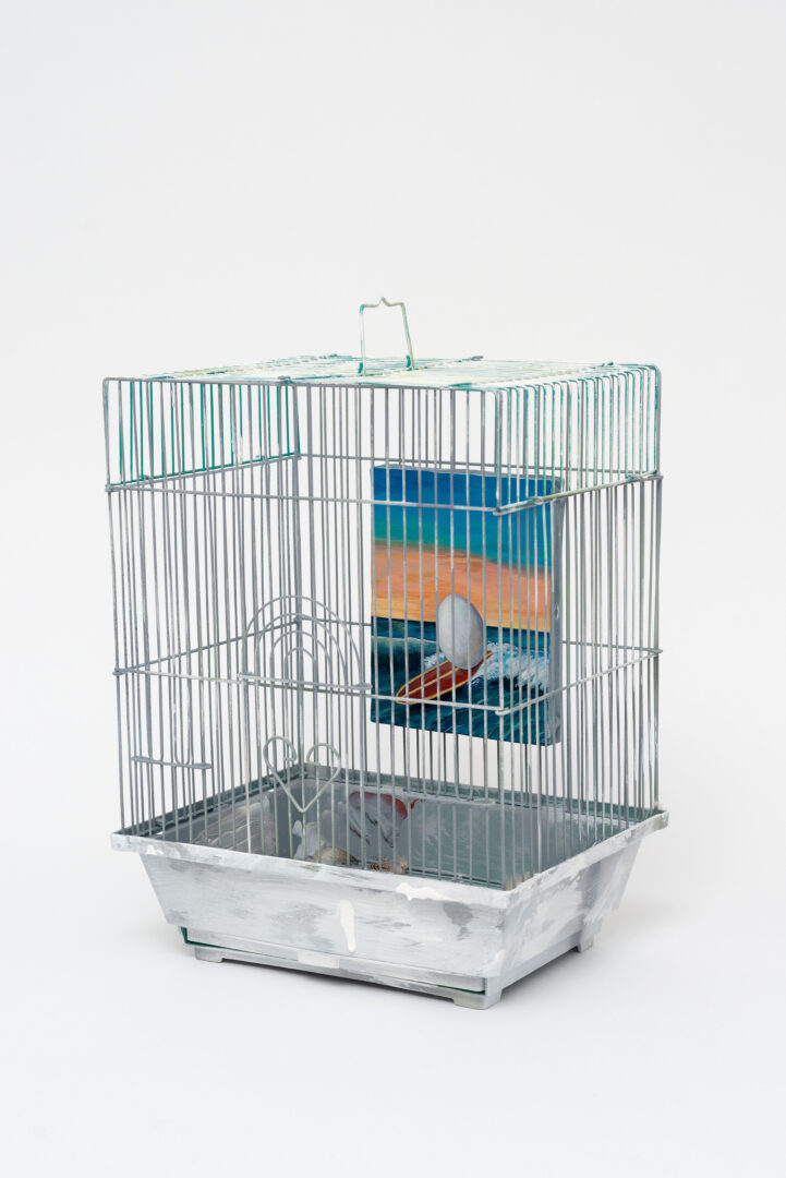 Exhibition View Groupshow «TGC – curated by XYZ Collective; COBRA, Story of eggs (bird gallery for birds), 2020» at Weiss Falk, Basel, 2020 / Photo: Flavio Karrer / Courtesy: the artists and Weiss Falk