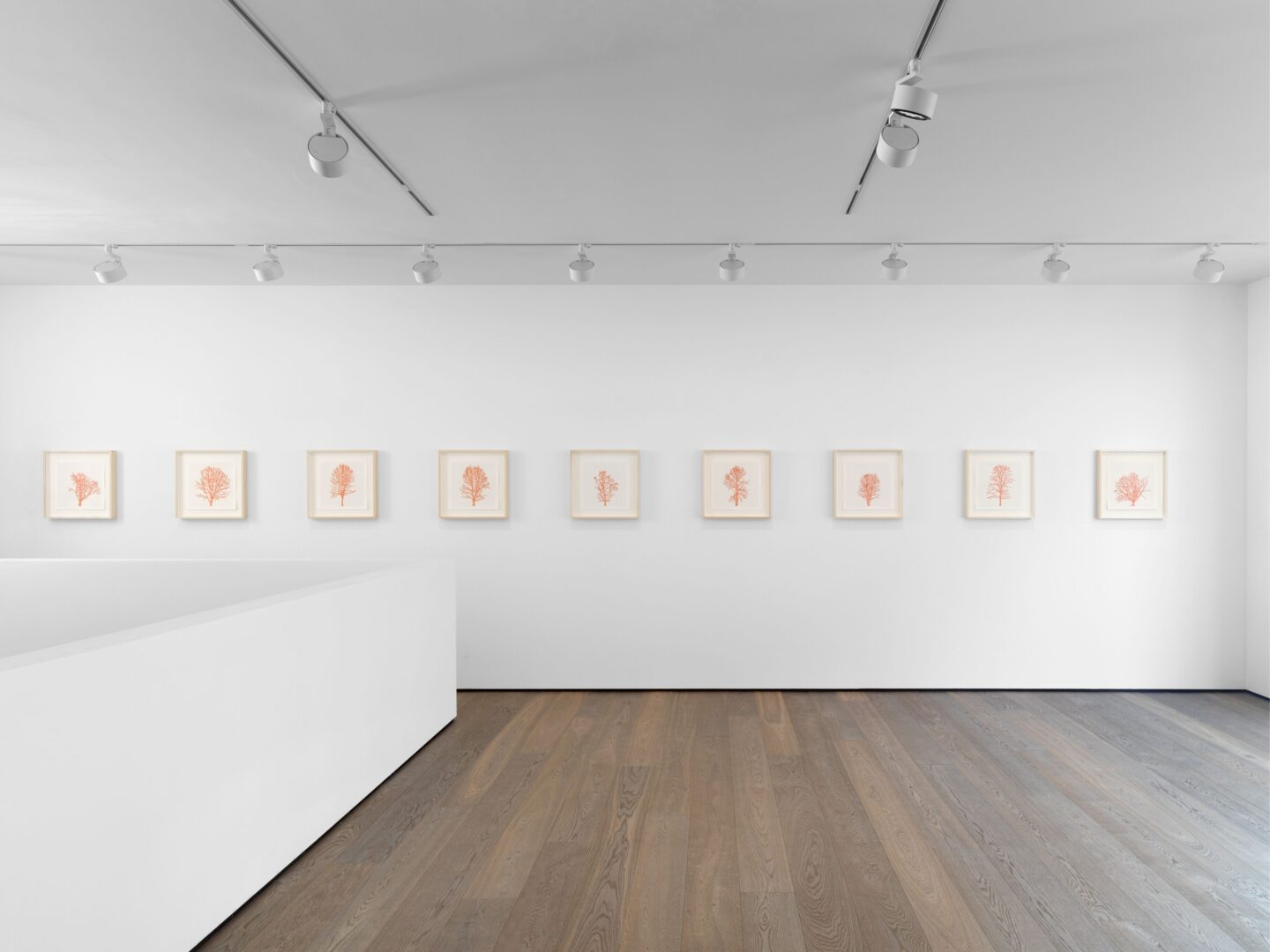 Exhibition View Charles Gaines Soloshow «Drawings» at Hauser & Wirth, St. Moritz, 2020 / Photo: Fredrik Nilsen / © Charles Gaines / Courtesy: the artist and Hauser & Wirth