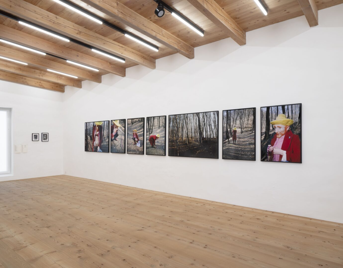 Exhibition View Groupshow «Up to and Including Limits: After Carolee Schneemann; view on Katrina Daschner, Vincent, 2002» at Muzeum Susch, Susch, 2019-2020 / Photo: Maja Wirkus / Courtesy: the artist and Muzeum Susch