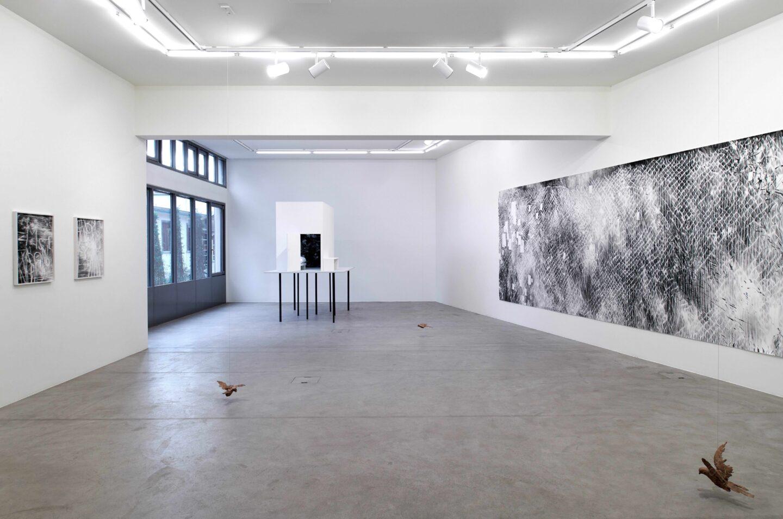Exhibition View Julia Steiner Soloshow «Circular Flight» at Galerie Urs Meile, Lucerne, 2020 / Photo: © Galerie Urs Meile / Courtesy: the artist and Galerie Urs Meile