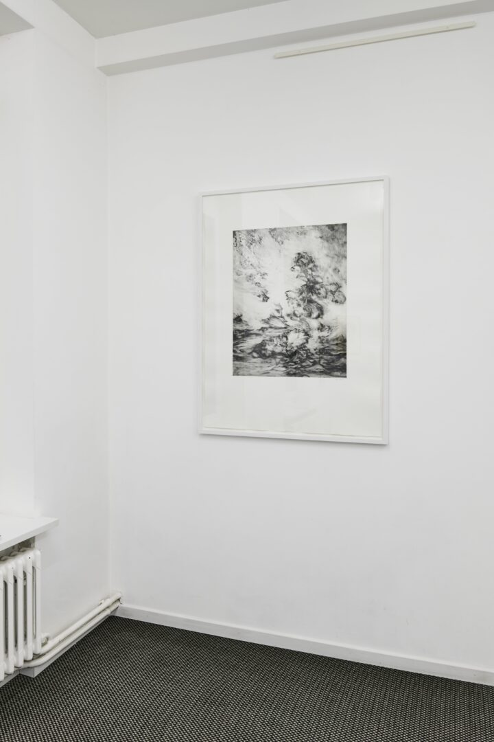 Exhibition View Groupshow «Intaglio and Lithography: Works on Paper; view on Julia Steiner, Kraut (surround), 2010» at Edition VFO, Zurch, 2020 / Photo: Sabina Bosch / Courtesy: the artists and Edition VFO