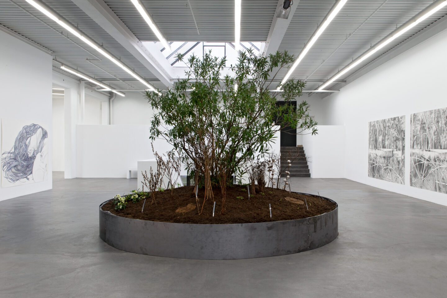 Exhibition View Marlene McCarty Soloshow «Into the Weeds; view on Into the Weeds, 2019» at Kunsthaus Baselland, Muttenz, 2020 / Photo: Gina Folly / Courtesy: the artist
