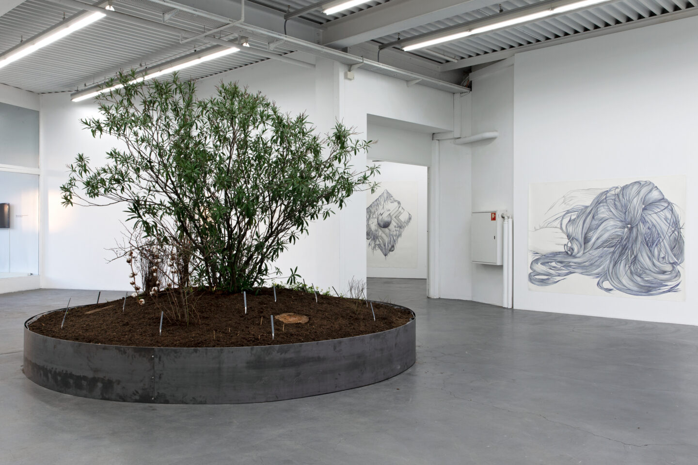 "Exhibition View Marlene McCarty Soloshow «Into the Weeds; view on Into the Weeds, 2019 / Devil's Snare, Male Pattern Baldness, Sag, Modern Mastery, Tumor or Goiter or Mammilla, Hell's Bells, 2019 / ""14""(2), 2014» at Kunsthaus Baselland, Muttenz, 2020 / Photo: Gina Folly / Courtesy: the artist"