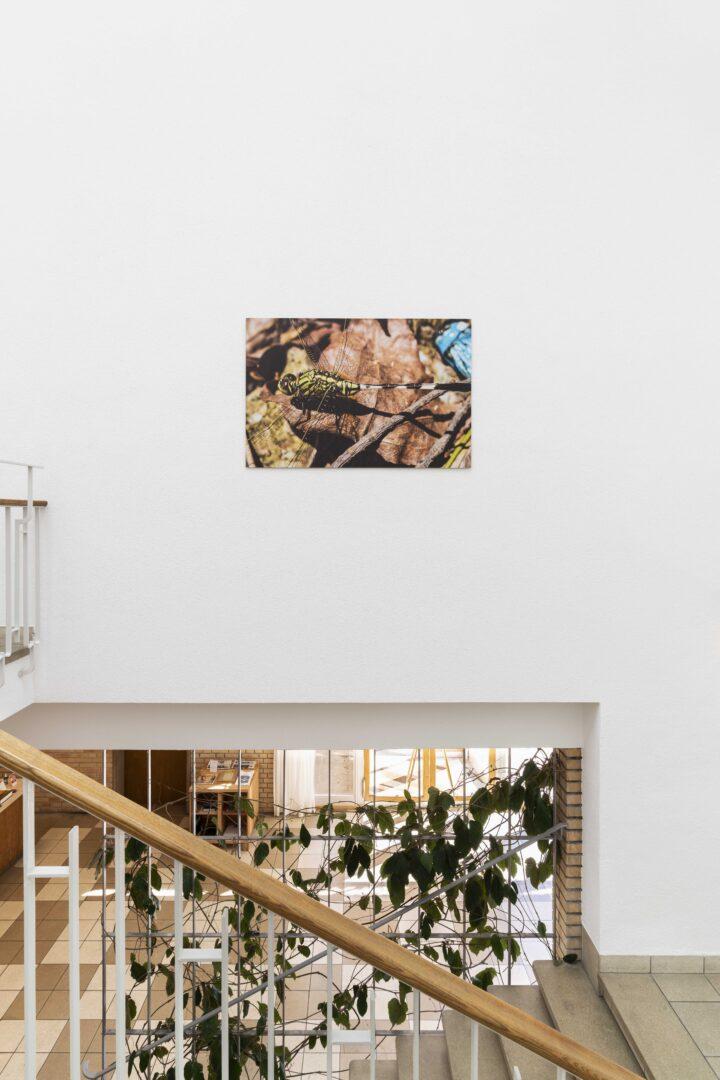 Exhibition View Jan Vorisek Soloshow «Collapse Poem; view on Fortune Teller, 2020» at Kunsthaus Glarus, Glarus, 2020 / Photo: Gunnar Meier / Courtesy: the artist and Galerie Bernhard, Zurich