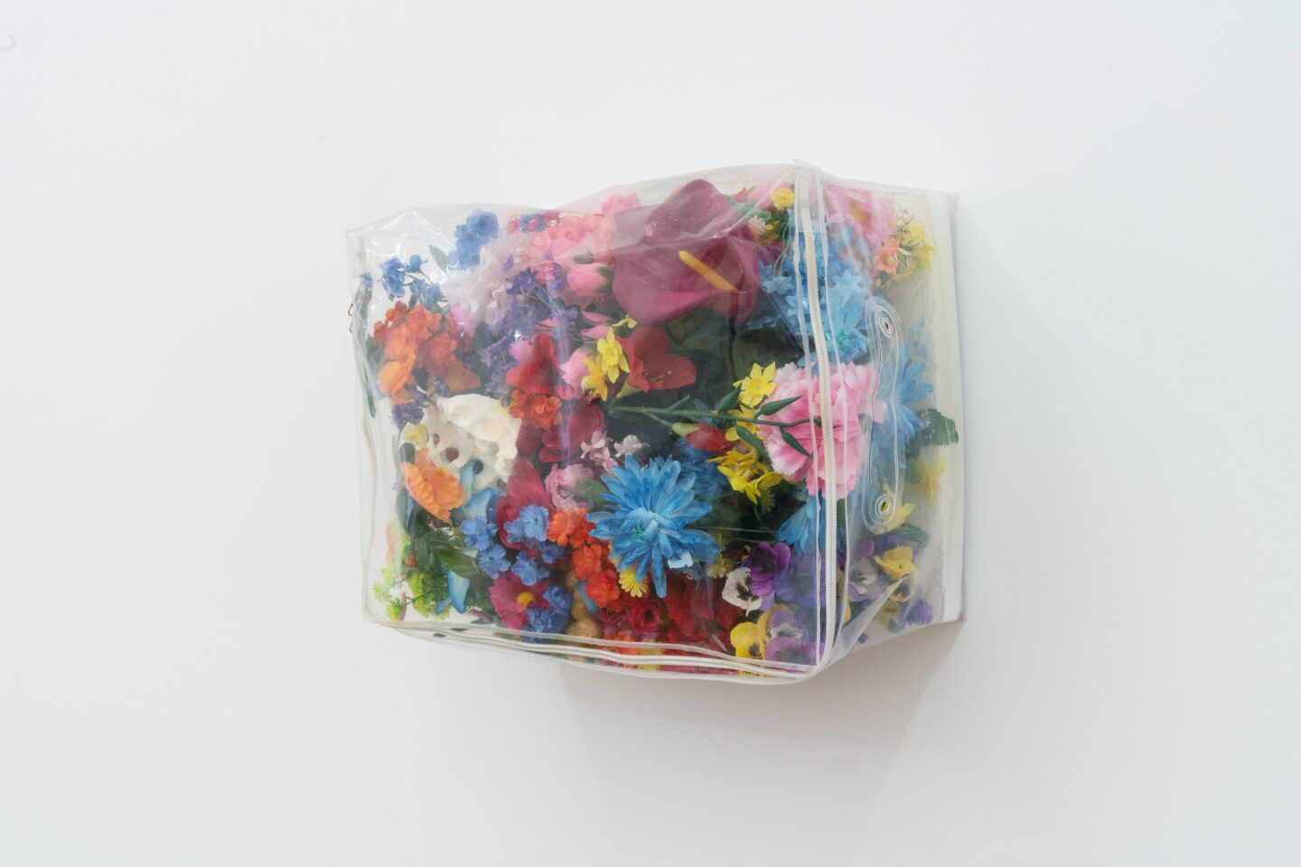 Exhibition View Groupshow «Kasten; view on Amy Yao, Weeds, 2015» at Stadtgalerie, Bern, 2020 / Photo: CE / Courtesy: the artist and Stadtgalerie, Bern