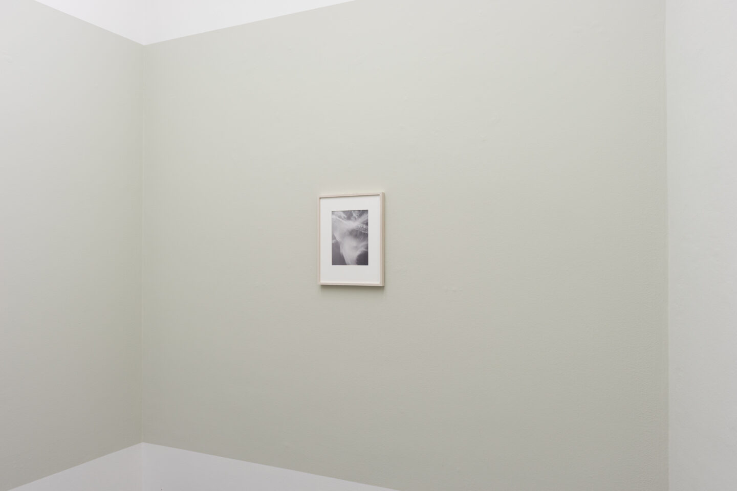 Exhibition View Jitka Hanzlová Soloshow at Mai 36 Galerie, Zurich, 2020 / Courtesy: the artist and Mai 36 Galerie