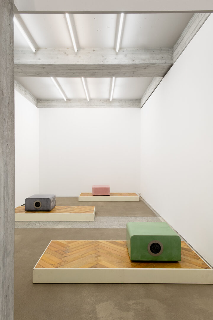 Exhibition View Groupshow «Metamorphosis Overdrive; view on Timothée Calame, Mobilier/Documentaire - Pupuces (Elegie), Mobilier/Documentaire – GenferGuru, Mobilier/Documentaire - Masculine Hard Soles & Kibbutzniks Junior, 2020» at Kunstmuseum St. Gallen, St. Gallen, 2020 / Photo: Sebastian Stadler / Courtesy: the artist and Kunstmuseum St. Gallen