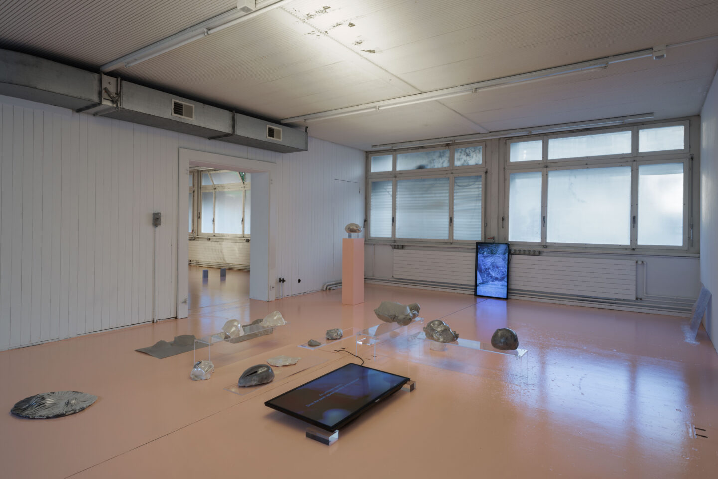 Exhibition View Ceylan Öztrük Soloshow «Am a mollusk, too; re/producing tangents» at Longtang, Zurich, 2020 / Photo: Flavio Karrer / Courtesy: the artist and Longtang